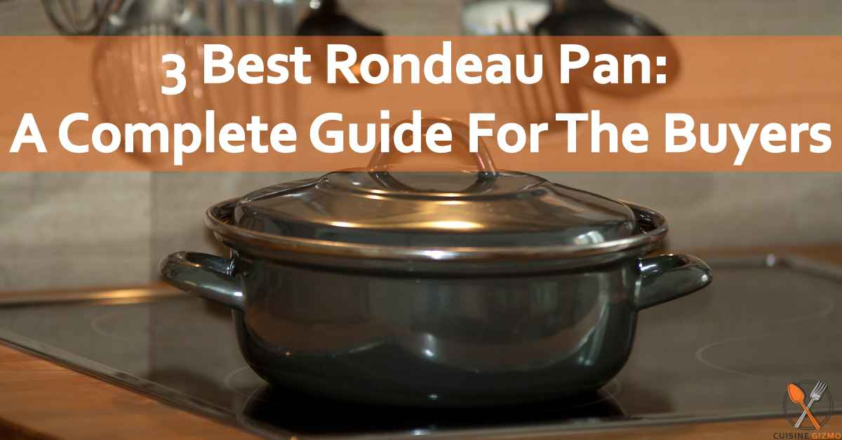 3 Best Rondeau Pan: A Complete Guide For The Buyers