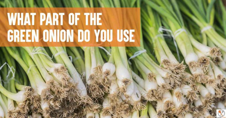 what part of the green onion do you use