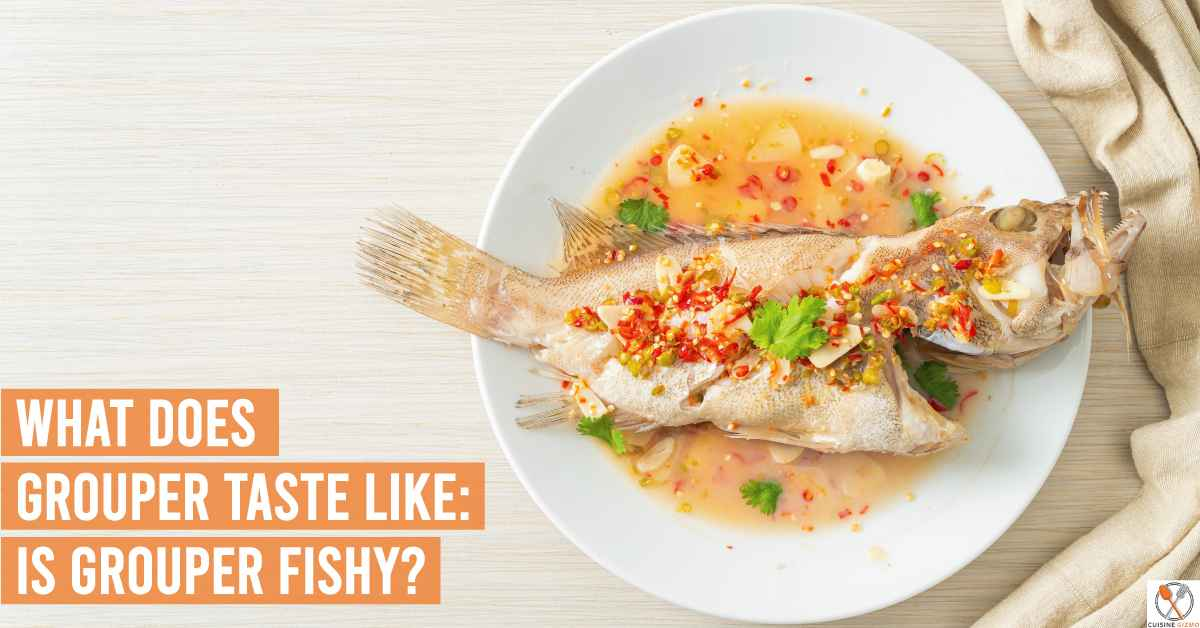 What Does Grouper Taste Like: Is Grouper Fishy?